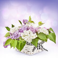 Lilac flowers in basket beautiful a on a light background Royalty Free Stock Image