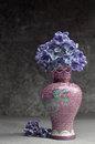 Lilac flowers macro composition purple pink syringa vulgaris or common close up Royalty Free Stock Photo