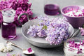 Lilac flowers sugar and syrup, essential oil with flower blossoms in glass jar Grey stone background Royalty Free Stock Photo