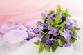 Lilac periwinkle spring bouquet of tinted Royalty Free Stock Photos
