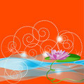 Lilac water-lily on an orange background Royalty Free Stock Photo