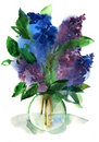 Lilacs bouquet in a vase Stock Images