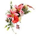 Lilie getrennt auf Weiß Lizenzfreie Stockbilder