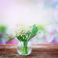 Lilly of valley on wood in glass wooden table with bokeh background retro toned Stock Image