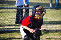 Lilttle league baseball catcher looking at camera Stock Images