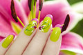 Lily french manicure Royalty Free Stock Photo