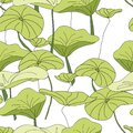 Lily Pad Pond pattern vector seamless repeat Royalty Free Stock Photo