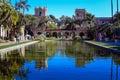 Lily pond in Balboa Park, San Diego, California Royalty Free Stock Photo