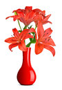 Lily in red vase isolated on white background Stock Photo
