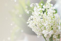 Lily of the valley bouquet on light background Stock Photo