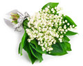 Lily of the valley bouquet lilies on white background Royalty Free Stock Photos