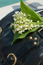 Lily of the valley May on a bag. Stock Image