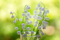 Lily of the valley vase with Stock Photo