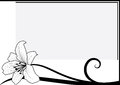Lily vector frame with in black and white colors Stock Images