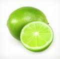 Lime, citrus fruit icon
