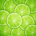 Lime fruit slices background eps vector illustration Royalty Free Stock Images