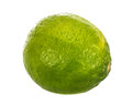 Lime isolated on a white background Royalty Free Stock Images