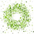 Lime Leaves Falling Vector Border. Flying Leaf Royalty Free Stock Photo
