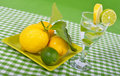 Lime and lemon with glass Royalty Free Stock Images