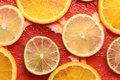 Lime, lemon, grapefruit and orange slices Stock Images