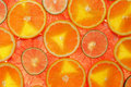 Lime, lemon, grapefruit and orange slices Royalty Free Stock Images