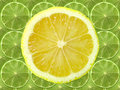 Lime and lemon slice Royalty Free Stock Photos