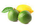 Lime and lemon on a white background Royalty Free Stock Images