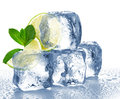 Lime mint and ice cube isolated Stock Photos