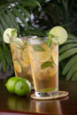 Lime and Mint Iced Tea Royalty Free Stock Photography