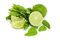 Lime and mint isolated on white Stock Photography