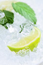 Lime and peppermint leaves Stock Images