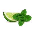 Lime slice with mint isolated on white background Stock Photography