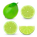 Lime slices fresh on white background Stock Photography