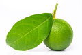 Limes with green leaf isolated on white Royalty Free Stock Photography