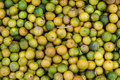 Limes green and yellow from phu quoc island vietnam Royalty Free Stock Images