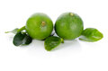 Limes with leaves isolated on white background Stock Images
