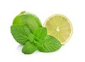 Limes and mint isolated on white background Royalty Free Stock Images