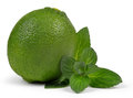 Limes with mint leaves on white Stock Image