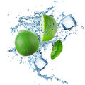 Limes and splashing water over white Stock Photos