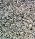 Limestone black and white striped pattern Royalty Free Stock Image