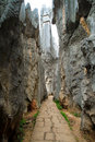 Limestone corridor at Kunming Shilin Stock Photos