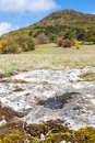 Limestone landscape Royalty Free Stock Photos