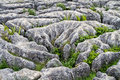 Limestone pavement Mahlam Cove Yorkshire Dales England Royalty Free Stock Photo
