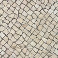 Limestone pavement Royalty Free Stock Photo