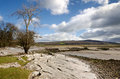 Limestone scenery in cumbria on the silverdale coast england Royalty Free Stock Photos