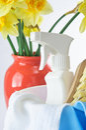 Limpeza da primavera Imagens de Stock Royalty Free