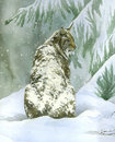 Lince sob o watercolour da neve (vertical) - Fotografia de Stock