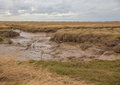 Lincolnshire salt marsh marshes neer tetney Stock Photography