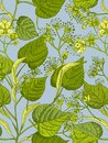 Linden blossom hand drawn seamless pattern with flower, lives and branch in yellow and green colors on blue background Royalty Free Stock Photo