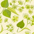Linden blossom hand drawn seamless pattern with flower, lives and branch in yellow and green colors on light beige Royalty Free Stock Photo